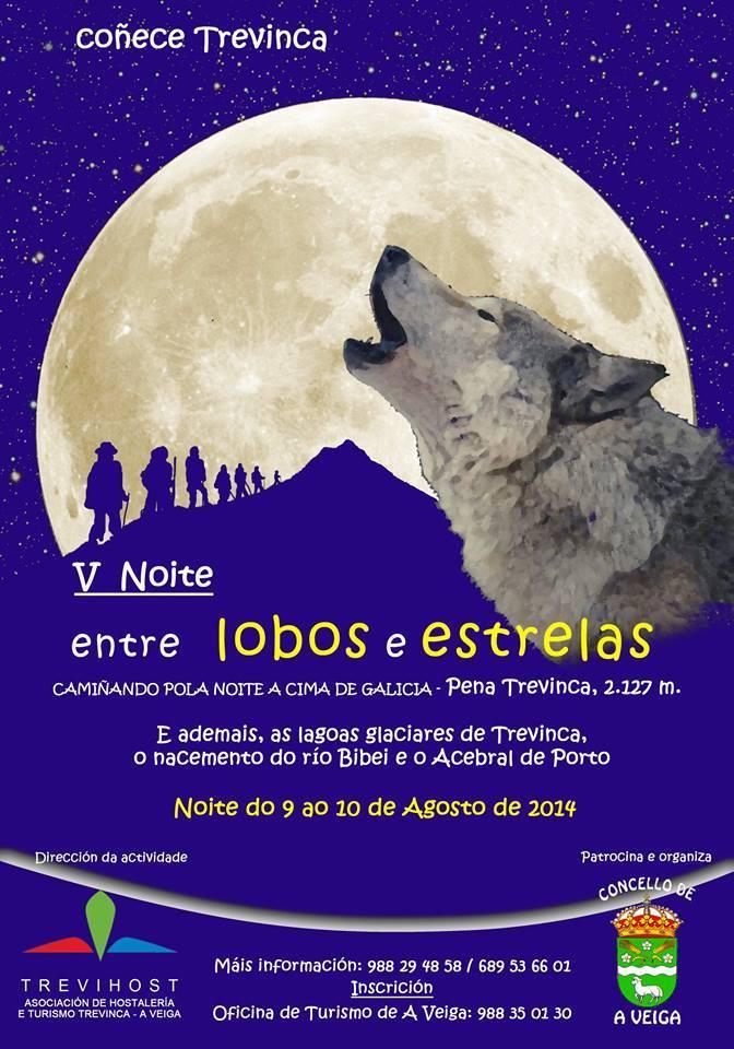 noite entre lobos e estrelas