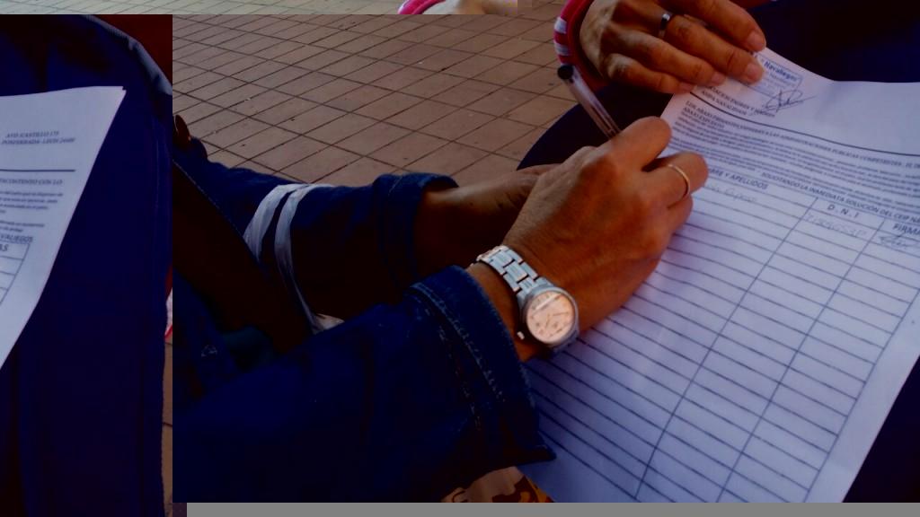 recogida inicial de firmas