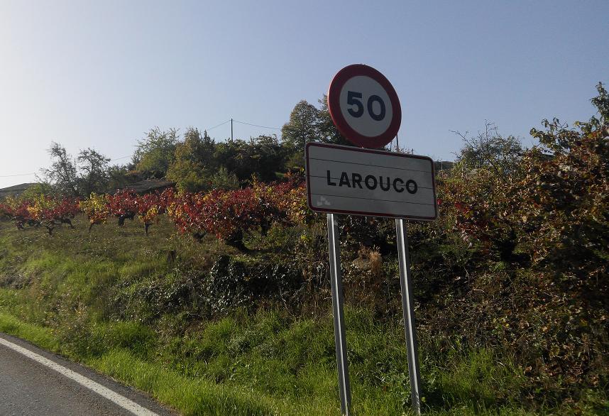Larouco2