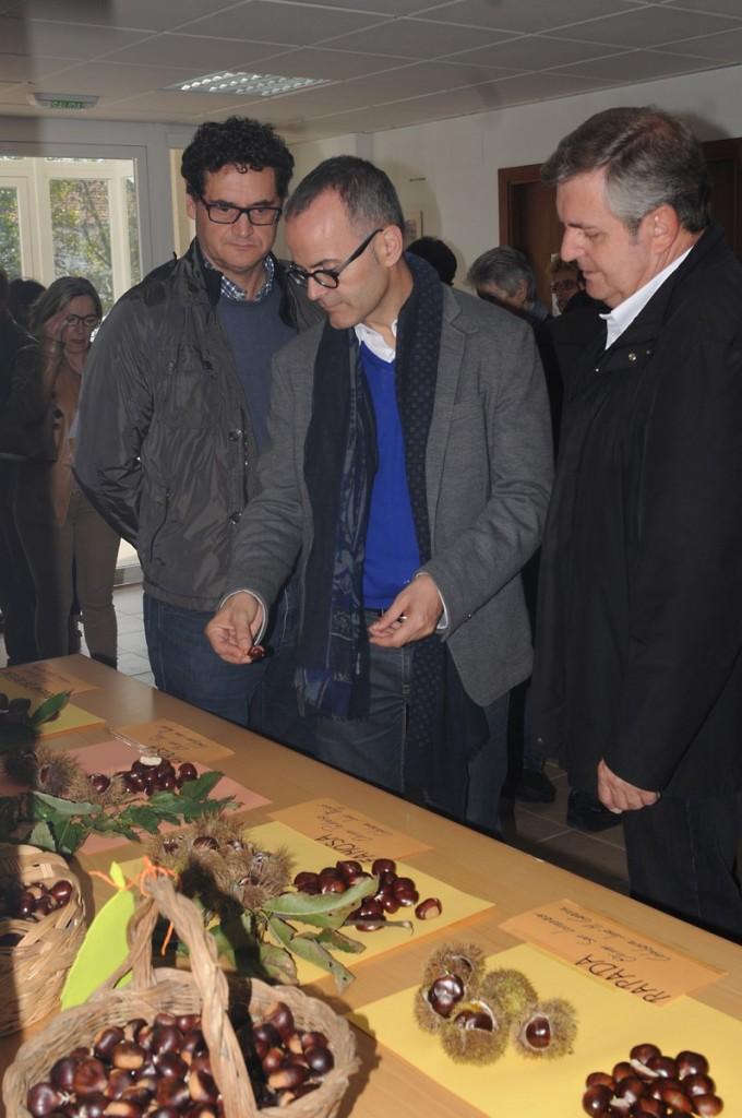 O conselleiro de Cultura, Educación e Ordenación Universitaria visita en Riós os stands e a exposición da Festa da Castaña e do Cogomelo 2014