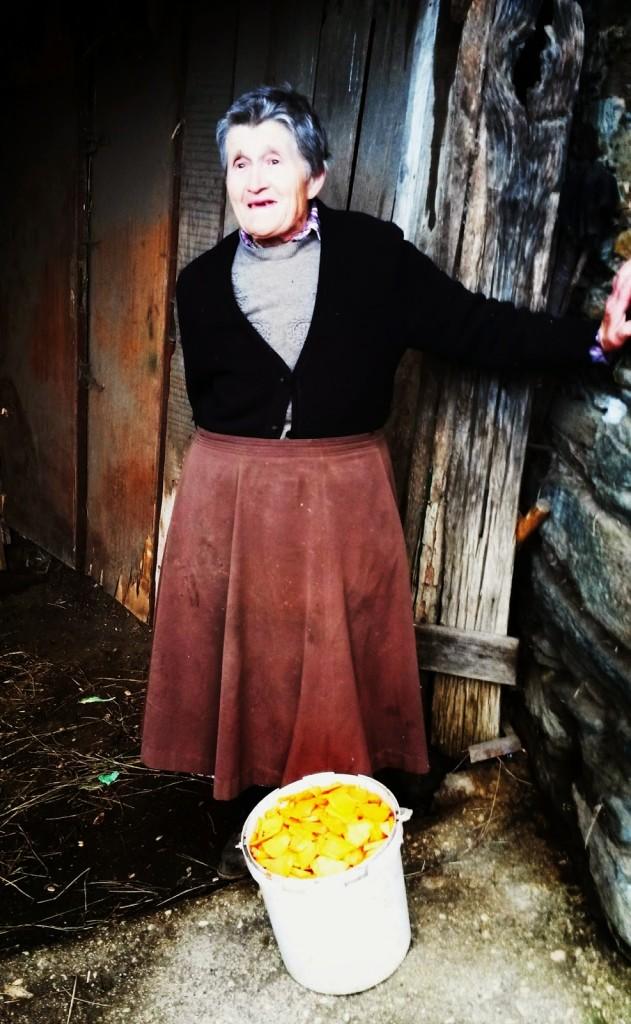 La señora Carmen de Cernego con un cubo de calabaza para dar a sus ovejas
