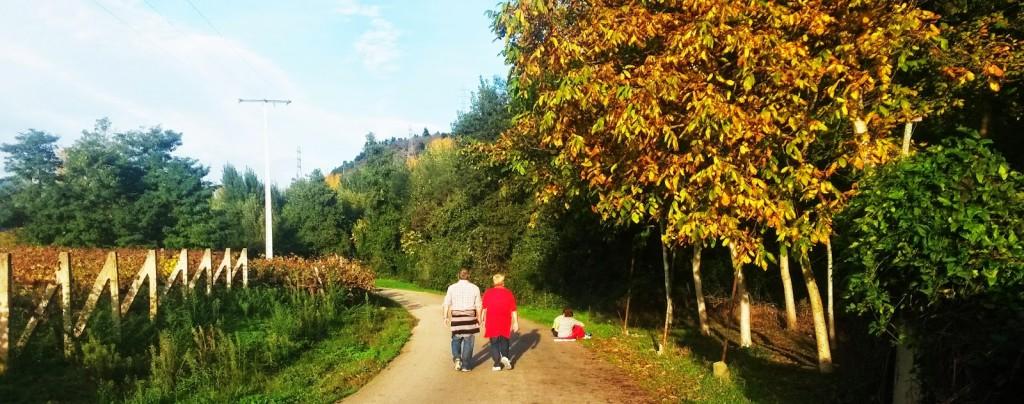 Una pareja pasea por A Veiga de A Rúa mientras dos mujeres charlan debajo de unos nogales