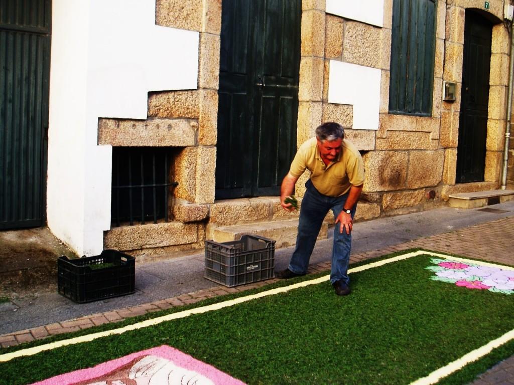 Rellenando con vegetación los espacios de esta alfombra