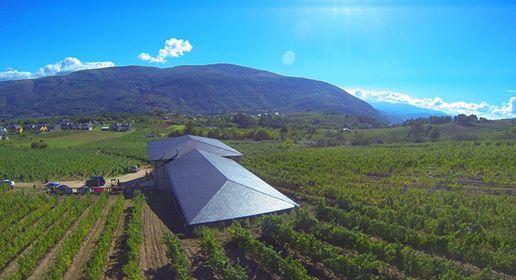 Foto: Cubierta Bodega d'Berna de la web cufa.es