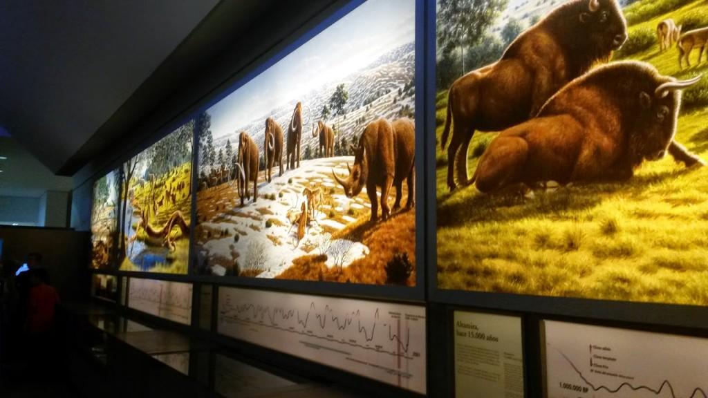museo cueva altamira