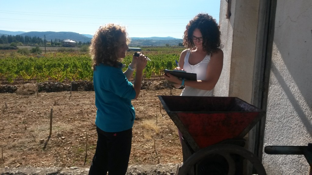 Victoria Blanco y Maria del Carmen Ares realizan mediciones sobre el grado de uva y anotaciones en el ámbito de la pesadora.