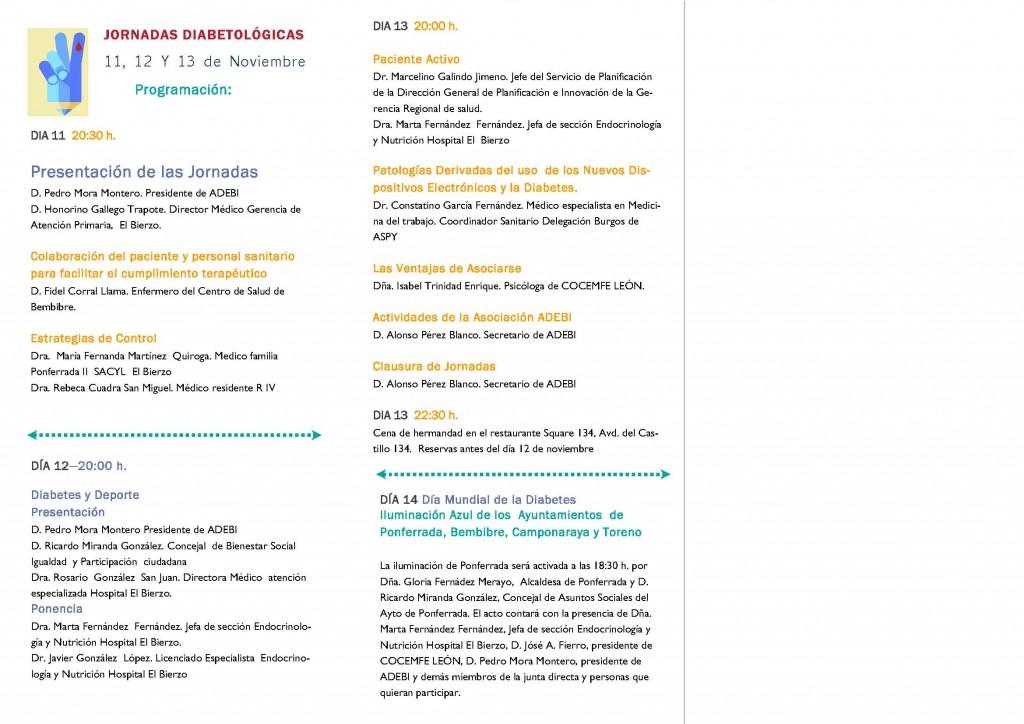 Programa Jornadas Diabetológicas 2015