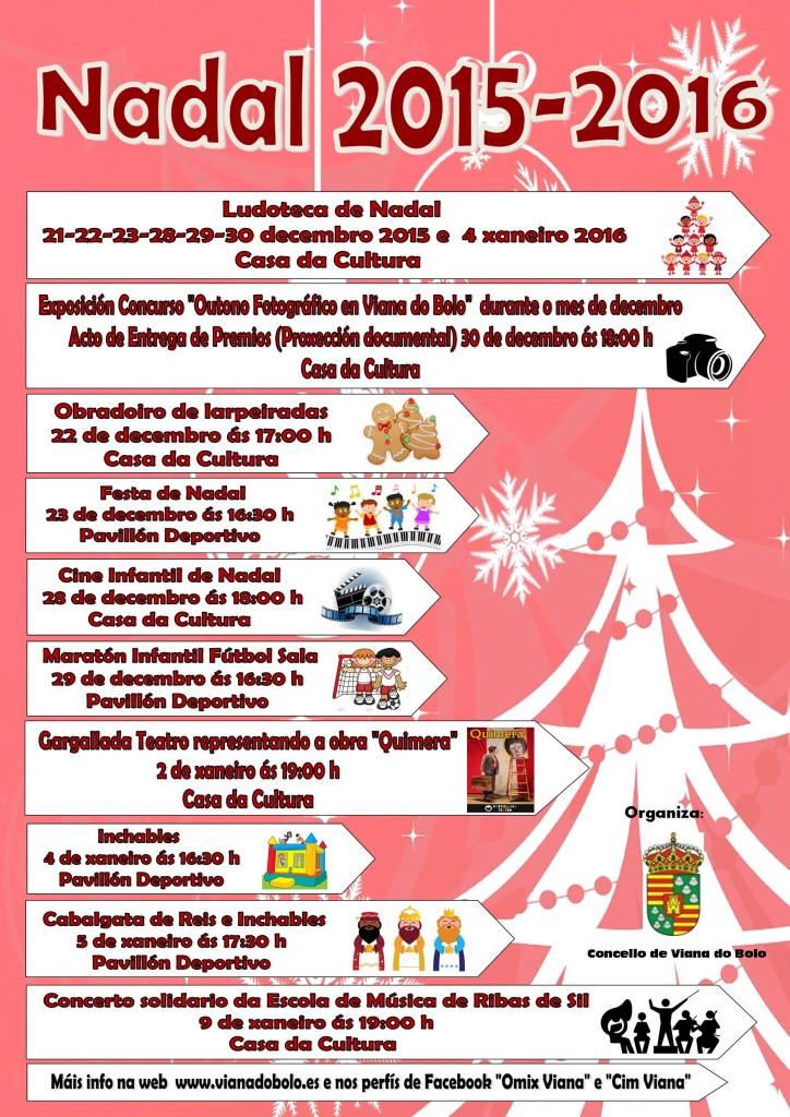 Programación Navidad Viana
