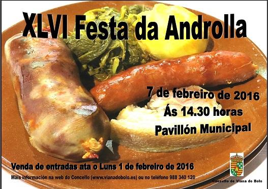 Cartel XLVI Festa da Androlla