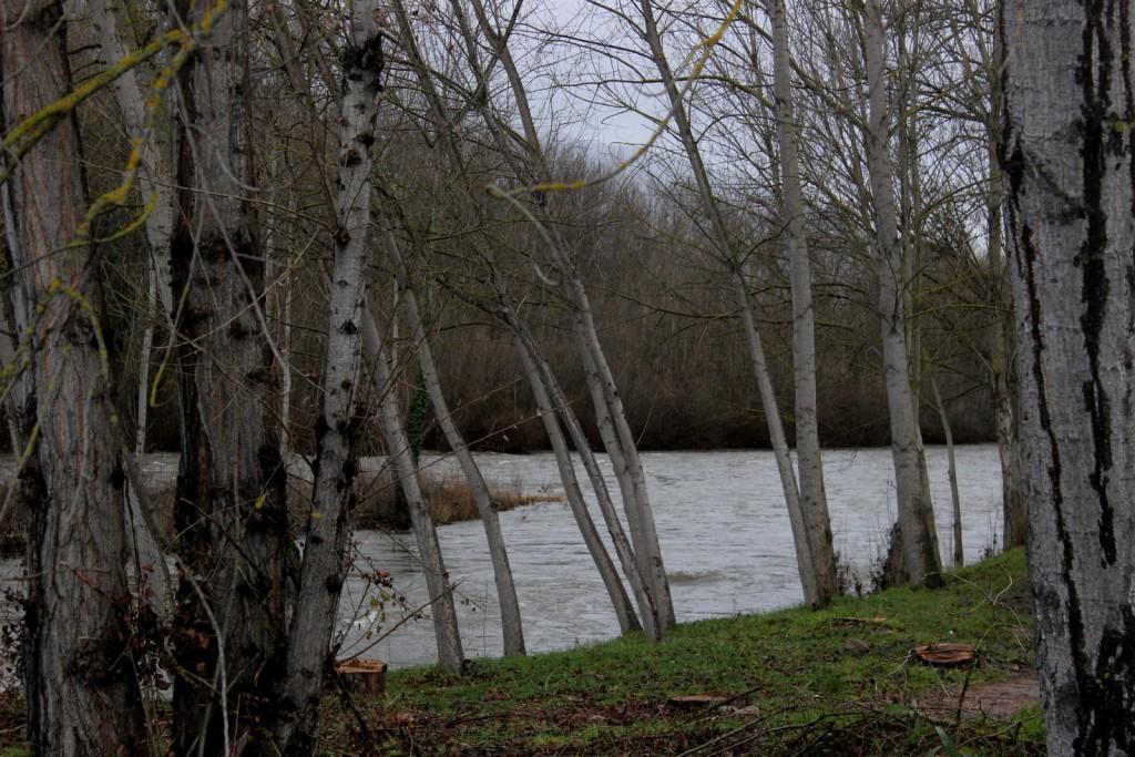 El Río Sil a su paso por Calabagueiros