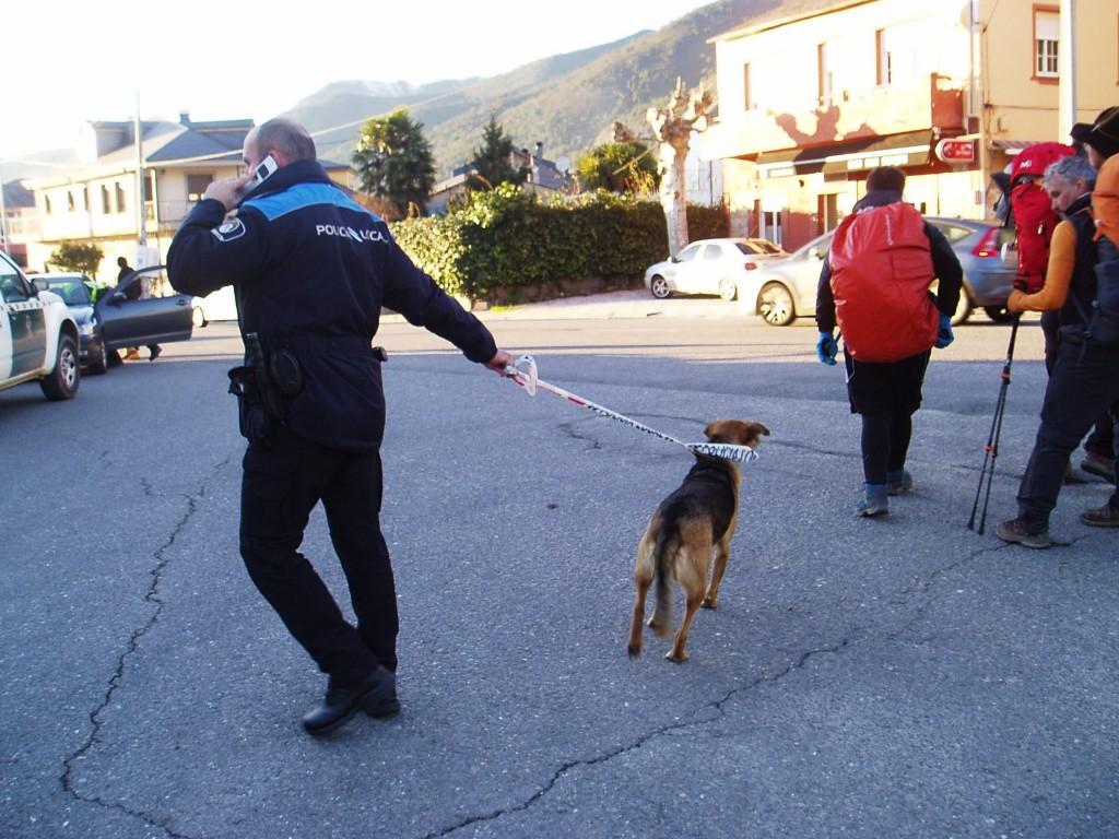 El perro se resiste a abandonar el grupo