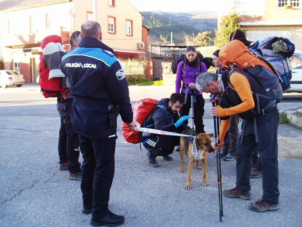 a perra con los peregrinos cuando se la entregaron a la Policía Local de A Rúa