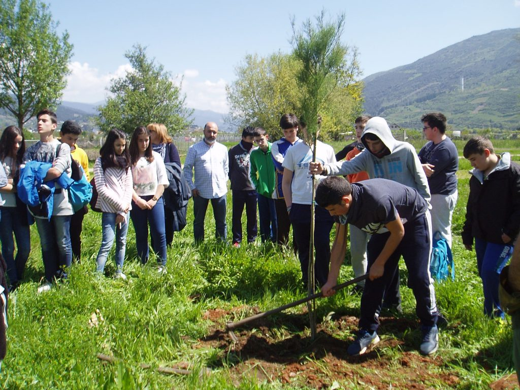 Aprendiendo a respetar la naturaleza plantando árboles