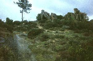 prg58_4