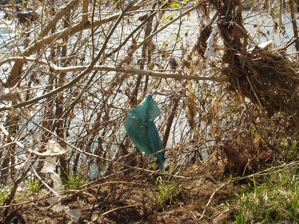 Río Sil con plástico