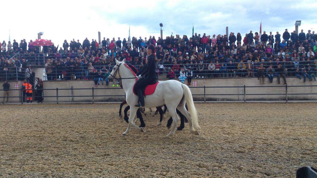 El público abarrotó el recinto ferial en la exhibición de la Hípica del Bierzo