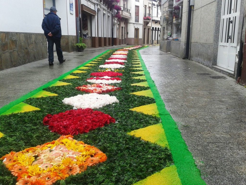 Tapices florales
