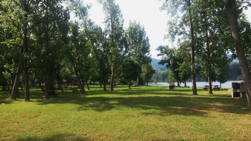 Zona de O Aguillón donde se talarán árboles
