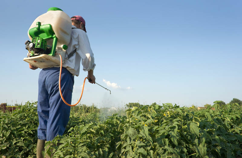 Archivo: Aplicando productos fitosanitarios