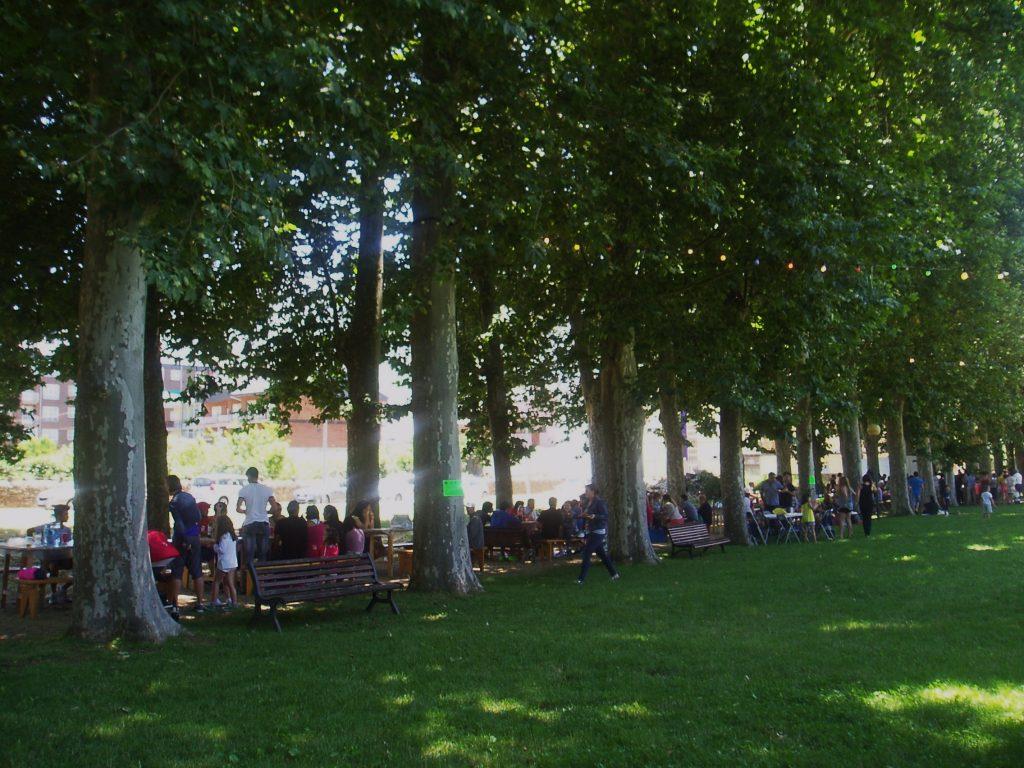 Bajo los árboles del parque