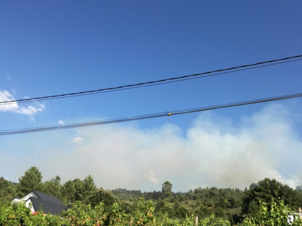 Foto Incendio Nerea (11)