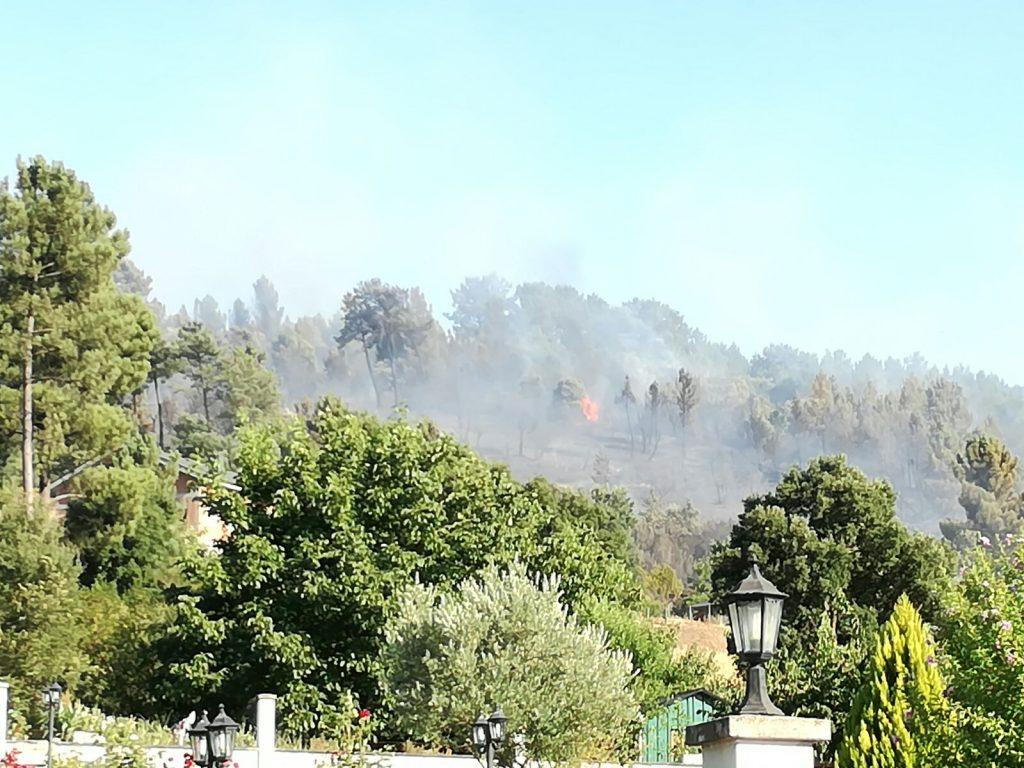 Foto Incendio Nerea (2)