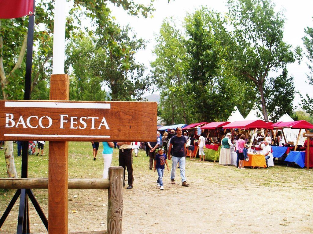 Baco Festa 2015