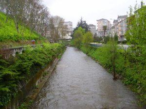 Rio Barbaña