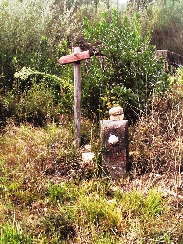 En San Martiño, Quiroga, la maleza sepulta las señales y mojones