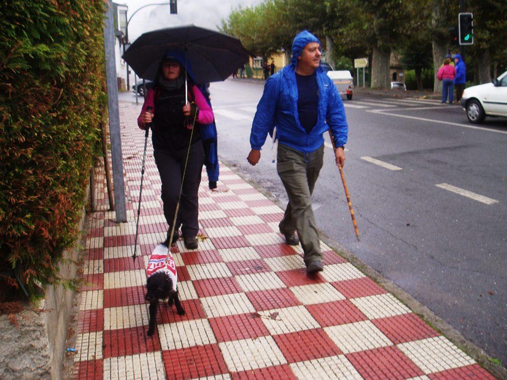 Con paraguas y perro